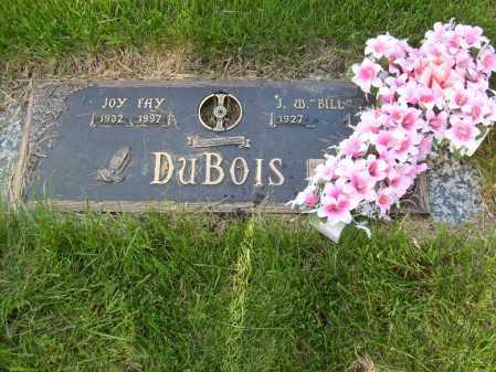 DUBOIS, JOY FAY - Ogle County, Illinois   JOY FAY DUBOIS - Illinois Gravestone Photos