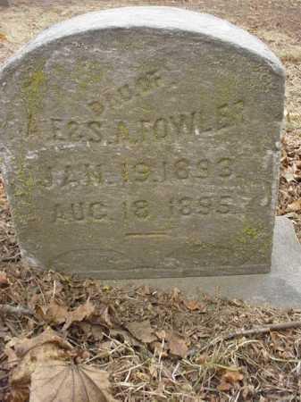 FOWLER, DAUGHTER - Ogle County, Illinois   DAUGHTER FOWLER - Illinois Gravestone Photos