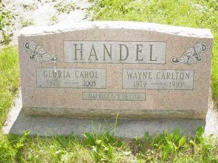 HANDEL, WAYNE CARLTON - Ogle County, Illinois | WAYNE CARLTON HANDEL - Illinois Gravestone Photos