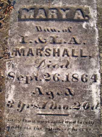 MARSHALL, MARY A. - Ogle County, Illinois | MARY A. MARSHALL - Illinois Gravestone Photos