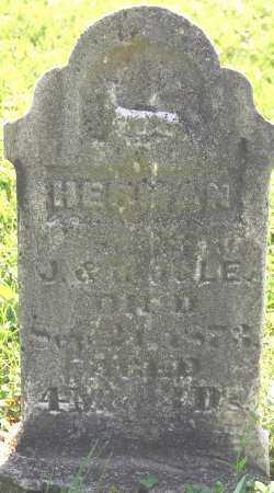 OGLE, HERMAN - Ogle County, Illinois | HERMAN OGLE - Illinois Gravestone Photos