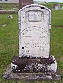 SMICE, ELIZABETH - Ogle County, Illinois   ELIZABETH SMICE - Illinois Gravestone Photos