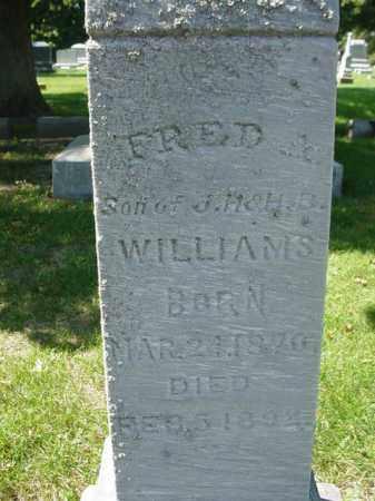 WILLIAMS, FRED - Ogle County, Illinois | FRED WILLIAMS - Illinois Gravestone Photos
