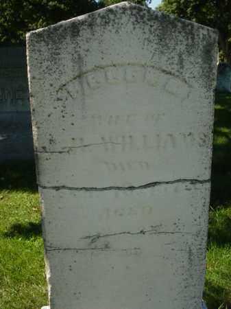 WILLIAMS, HELEN - Ogle County, Illinois   HELEN WILLIAMS - Illinois Gravestone Photos