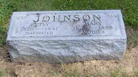 JOHNSON, MARY - Peoria County, Illinois | MARY JOHNSON - Illinois Gravestone Photos