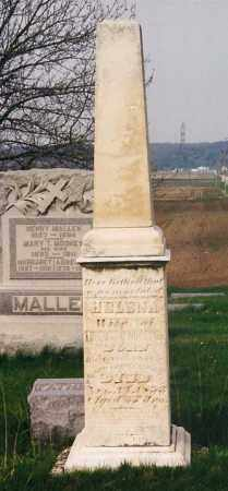 MOONEY, HELENA - Peoria County, Illinois | HELENA MOONEY - Illinois Gravestone Photos
