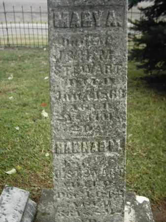 STEWART, HANNA M - Peoria County, Illinois | HANNA M STEWART - Illinois Gravestone Photos