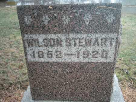 STEWART, WILSON - Peoria County, Illinois | WILSON STEWART - Illinois Gravestone Photos