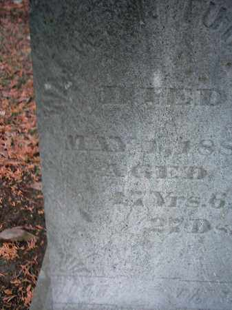 TURBETT, WALTER - Peoria County, Illinois | WALTER TURBETT - Illinois Gravestone Photos