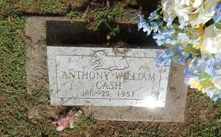 CASH, ANTHONY WILLIAM - Perry County, Illinois | ANTHONY WILLIAM CASH - Illinois Gravestone Photos