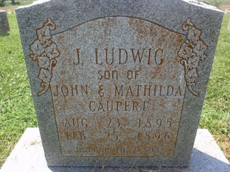 CAUPERT, J LUDWIG - Perry County, Illinois | J LUDWIG CAUPERT - Illinois Gravestone Photos