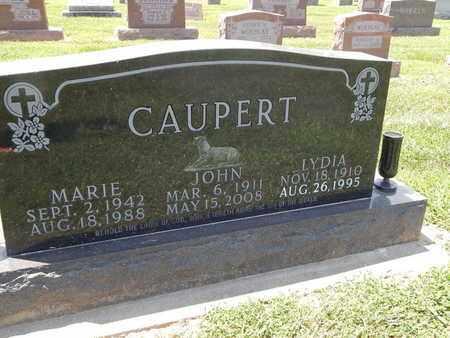 CAUPERT, MARIE - Perry County, Illinois | MARIE CAUPERT - Illinois Gravestone Photos