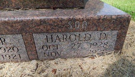 DAVISON, HAROLD D - Perry County, Illinois | HAROLD D DAVISON - Illinois Gravestone Photos