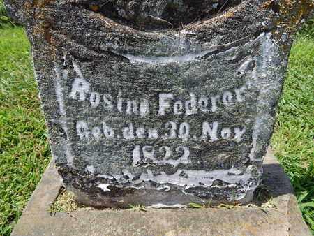 FEDERER, ROSINA - Perry County, Illinois | ROSINA FEDERER - Illinois Gravestone Photos