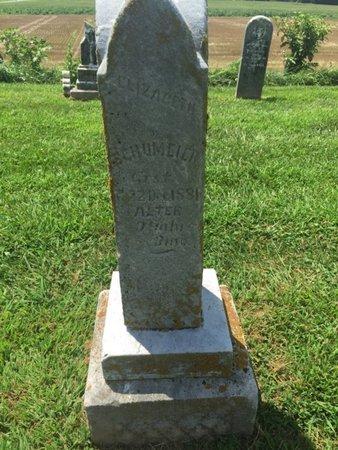SCHUMEIER, ELIZABETH - Perry County, Illinois | ELIZABETH SCHUMEIER - Illinois Gravestone Photos