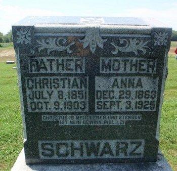 SCHWARZ, ANNA - Perry County, Illinois | ANNA SCHWARZ - Illinois Gravestone Photos
