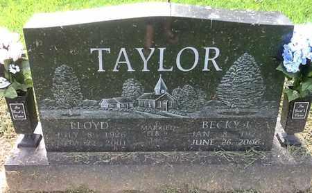 TAYLOR, LLOYD - Perry County, Illinois | LLOYD TAYLOR - Illinois Gravestone Photos