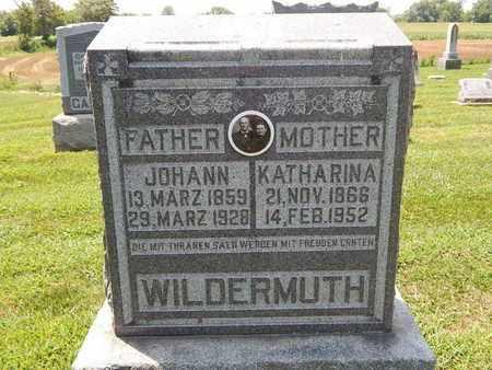WILDERMUTH, JOHANN - Perry County, Illinois | JOHANN WILDERMUTH - Illinois Gravestone Photos