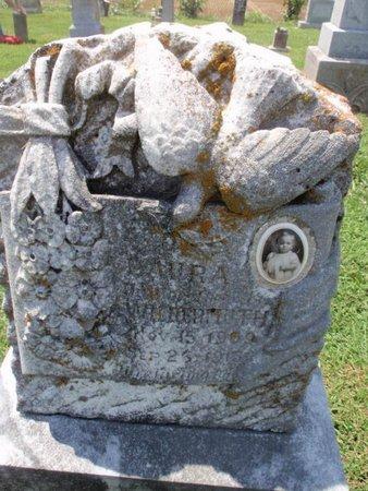 WILDERMUTH, LAURA - Perry County, Illinois | LAURA WILDERMUTH - Illinois Gravestone Photos