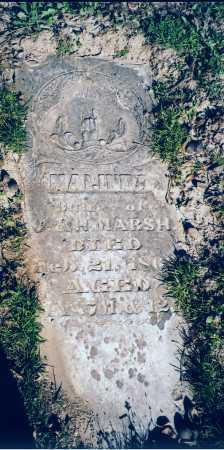 MARSH, MALINNA - Piatt County, Illinois | MALINNA MARSH - Illinois Gravestone Photos