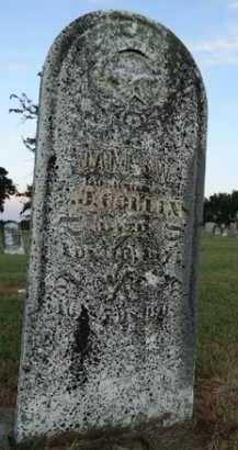 COLLINS, JAMES W. - Pike County, Illinois | JAMES W. COLLINS - Illinois Gravestone Photos