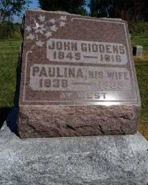 GIDDENS, PAULINA - Pike County, Illinois | PAULINA GIDDENS - Illinois Gravestone Photos