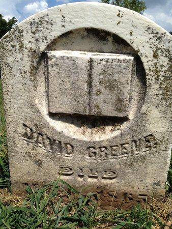GREEN, DAVID - Pike County, Illinois | DAVID GREEN - Illinois Gravestone Photos