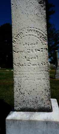 JOHNSTON, DAVID - Pike County, Illinois | DAVID JOHNSTON - Illinois Gravestone Photos