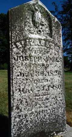 JONES, ELIZABETH - Pike County, Illinois   ELIZABETH JONES - Illinois Gravestone Photos
