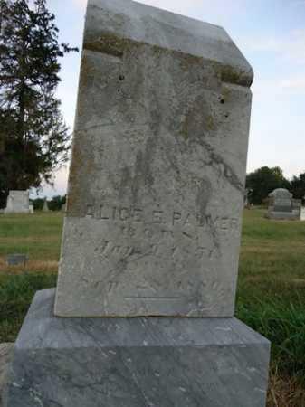 PALMER, ALICE E. - Pike County, Illinois   ALICE E. PALMER - Illinois Gravestone Photos