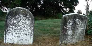 SHELTON, ELIZABETH - Pike County, Illinois | ELIZABETH SHELTON - Illinois Gravestone Photos