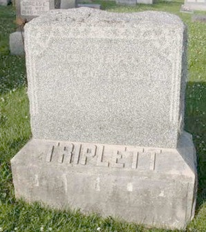 TRIPLETT, DINITIA FRANCIS - Pike County, Illinois | DINITIA FRANCIS TRIPLETT - Illinois Gravestone Photos