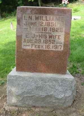 MOORE WILLIAMS, E.J. [ELIZA JANE] - Pike County, Illinois | E.J. [ELIZA JANE] MOORE WILLIAMS - Illinois Gravestone Photos