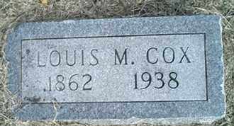 COX, LOUIS MARTIAL - Pulaski County, Illinois | LOUIS MARTIAL COX - Illinois Gravestone Photos