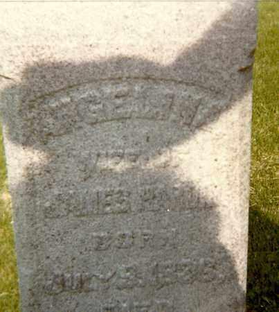 HARDIN, ANGELINA - Rock Island County, Illinois | ANGELINA HARDIN - Illinois Gravestone Photos
