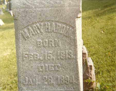 HARDIN, MARY - Rock Island County, Illinois | MARY HARDIN - Illinois Gravestone Photos