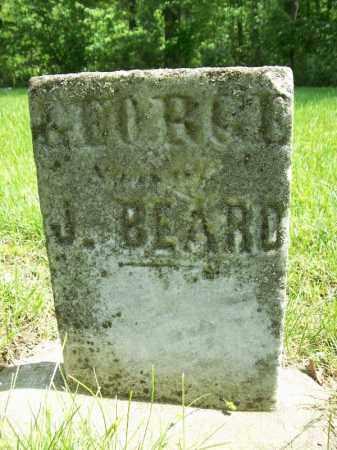 BEARD, GEORGE J. - Schuyler County, Illinois   GEORGE J. BEARD - Illinois Gravestone Photos