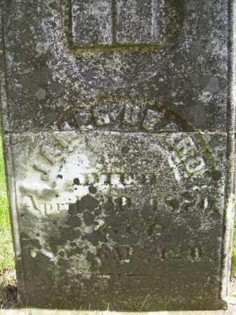 BEARD, JAMES - Schuyler County, Illinois | JAMES BEARD - Illinois Gravestone Photos