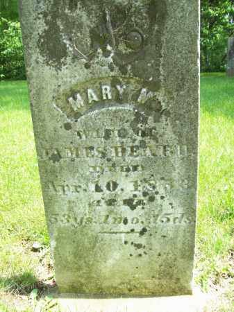 BEARD, MARY M. - Schuyler County, Illinois | MARY M. BEARD - Illinois Gravestone Photos