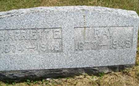 BLACKBURN, RAY - Schuyler County, Illinois | RAY BLACKBURN - Illinois Gravestone Photos