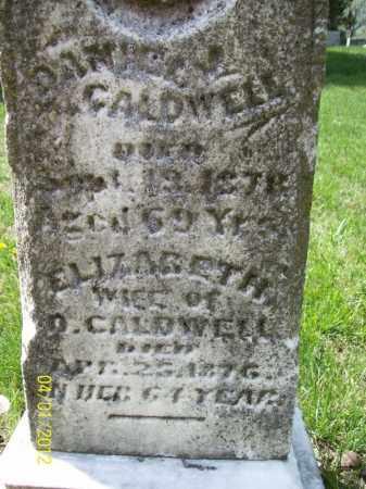 CALDWELL, ELIZABETH - Schuyler County, Illinois | ELIZABETH CALDWELL - Illinois Gravestone Photos