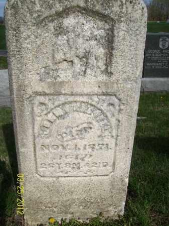 CALDWELL, JOHN - Schuyler County, Illinois | JOHN CALDWELL - Illinois Gravestone Photos