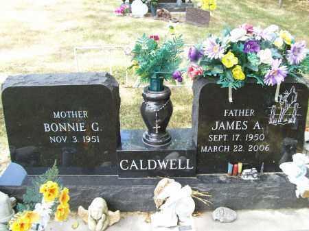 CALDWELL, JAMES A - Schuyler County, Illinois | JAMES A CALDWELL - Illinois Gravestone Photos