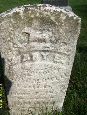 CALDWELL, MARY E - Schuyler County, Illinois | MARY E CALDWELL - Illinois Gravestone Photos