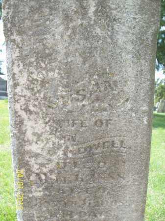 CALDWELL, SUSAN - Schuyler County, Illinois | SUSAN CALDWELL - Illinois Gravestone Photos