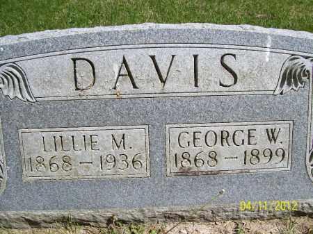DAVIS, LILLIE M. - Schuyler County, Illinois | LILLIE M. DAVIS - Illinois Gravestone Photos