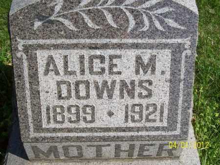 DOWNS, ALICE M - Schuyler County, Illinois   ALICE M DOWNS - Illinois Gravestone Photos