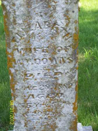 DOWNS, ELIZABETH - Schuyler County, Illinois | ELIZABETH DOWNS - Illinois Gravestone Photos