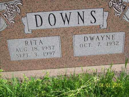 DOWNS, DWAYNE - Schuyler County, Illinois | DWAYNE DOWNS - Illinois Gravestone Photos