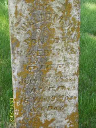 DOWNS, WILLIAM M - Schuyler County, Illinois | WILLIAM M DOWNS - Illinois Gravestone Photos